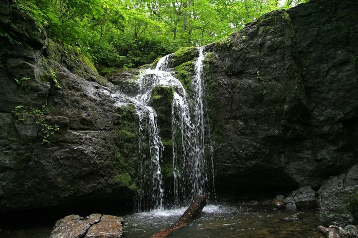 Kravtsovskiye waterfalls (Khasan district, Primorsky kray, Russia)