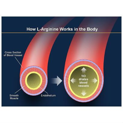 What is the correct dosage of L-arginine for erectile ...