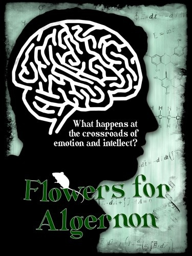 best flowers for algernon images flowers for  themes for flowers for algernon rct season
