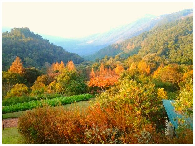 Haenertsburg... Beautiful autumn mountains