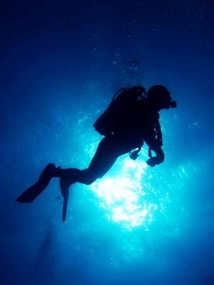 Visit Greece | Diving in Greece #sports #watersports #sea #diving #summer