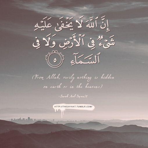 إِنَّ اللَّهَ لَا يَخْفَى عَلَيْهِ شَيْءٌ فِي الْأَرْضِ وَلَا فِي السَّمَاءِ From Allah, verily nothing is hidden on earth or in the heavens. (Surat Al Imran 5)