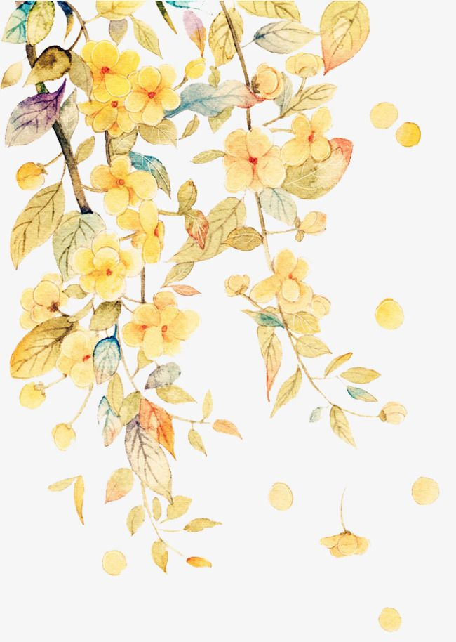 Watercolor Flowers In 2020 Flower Art Watercolor Flowers