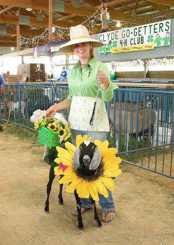 goat-flower-costume