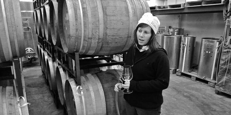 Silverlake Wine - Donkey & Goat Winemaker Tasting with Tracy Brandt   http://www.eatplusdrink.com/calendar/2017/3/2/silverlake-wine-donkey-goat-winemaker-tasting-with-tracy-brandt
