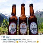 kombuchabryggeriet's Profile • Instagram / Norwegian Kombucha brand