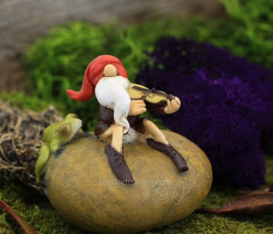 Gnome playing a fiddle on a rock with a frog