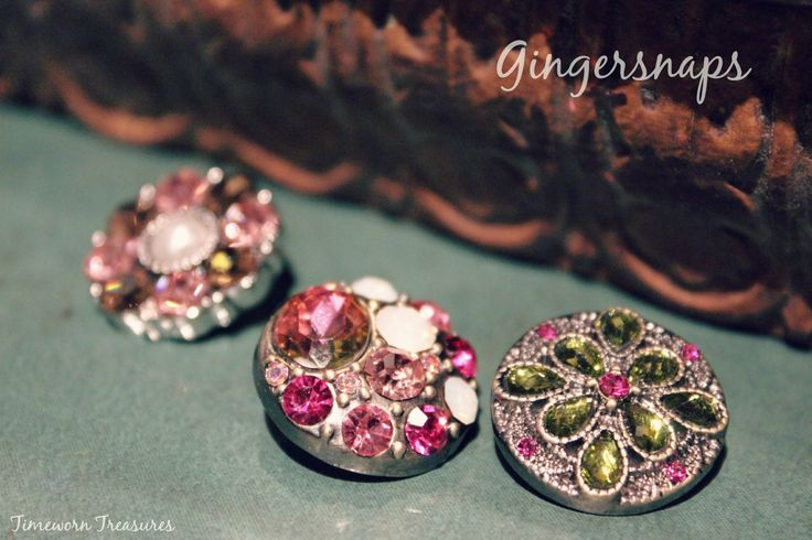 New Ginger Snaps Spring 2015  Gingersnaps Interchangeable Jewelry
