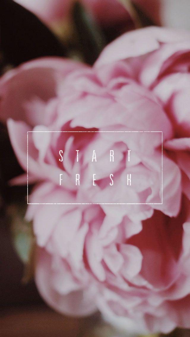 Pink peony flowers 'Start Fresh' iphone wallpaper background phone lock screen