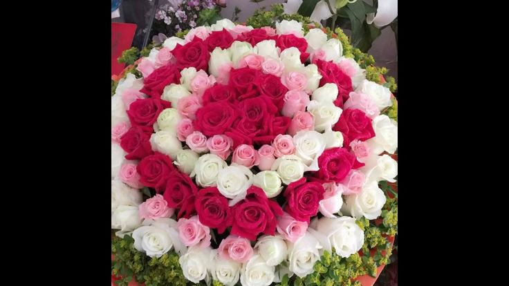 http://www.chinaflower815.com/listcp.asp?id=4068  Pure love    (ID:4068) White,purple and champange color roses, total 33 stems with babybreath, hand bouquet.  Flowers shop in China offer fresh flowers delivery across China, 365 days delivery to all cities of China.  How to send flowers to China from other country? Choose online local China flowers shop.  order flowers to China for same day flowers delivery to shanghai , beijing, guangzhou, shenzhen and all other cities in China.