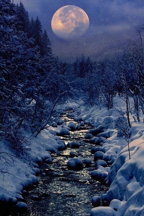 Moonlight on the Snow - Nikki Gold Photo Galleries - Mermaid-rebellion.com