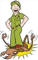 مكافحة حشرات, pest control