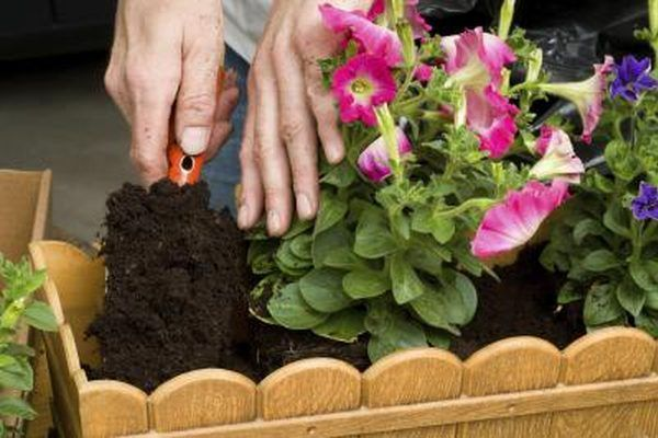 A woman plants flowers in a window box container.