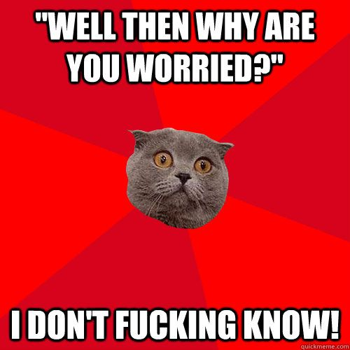 chronic anxiety cat meme - Google Search