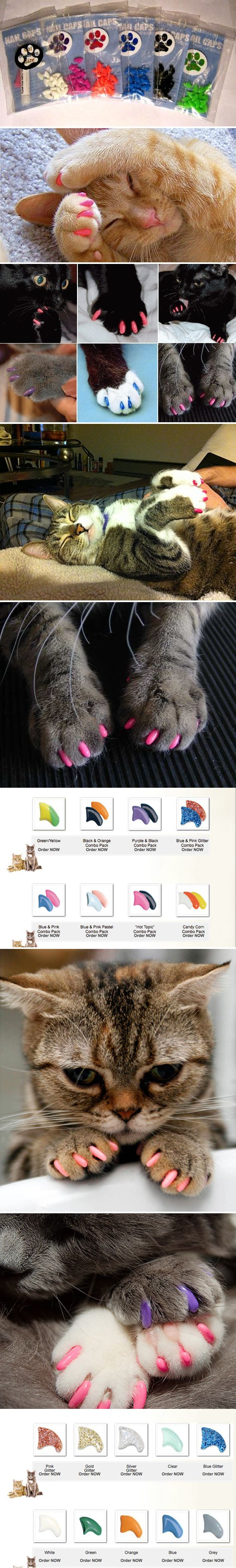chat-vernis-anais-et-pedro  #cat #nails