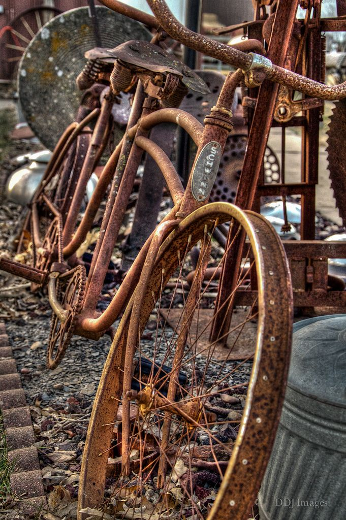 Bicycle Built for Two | Schwinn tandem bike #boulderinn