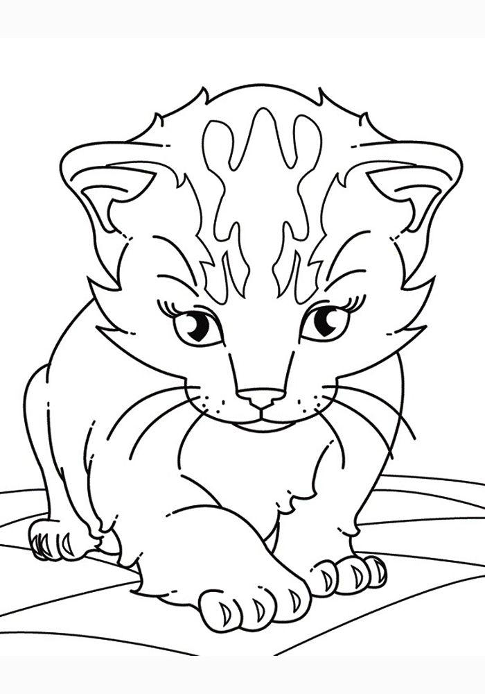 Картинки котиков разукрашка