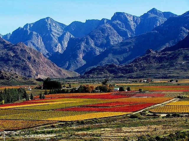 Autumn in South Africa - grew up there and had forgotten how stunningly beautiful if was until driving from Jhb to Kruger National Park in January this year.