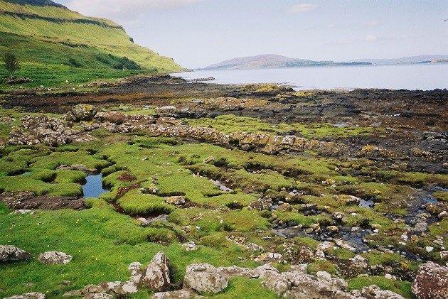 Wat dichter bij huis en minder tropisch, maar daarom niet minder mooi. Dat is het vierde grootste Schots eiland Isle of Mull. Je kunt er naartoe met de ferry en er heerlijk wandelen in de natuur of een bezoek brengen aan het middeleeuwse Duart Castle. Ook dit eiland diende als decor voor talrijke films en series.