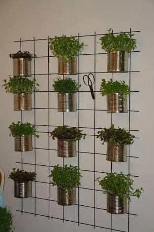 Die besten 25+ Wall herb garden indoor Ideen auf Pinterest