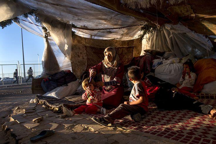 Syrian refugees www.narenjtree.org