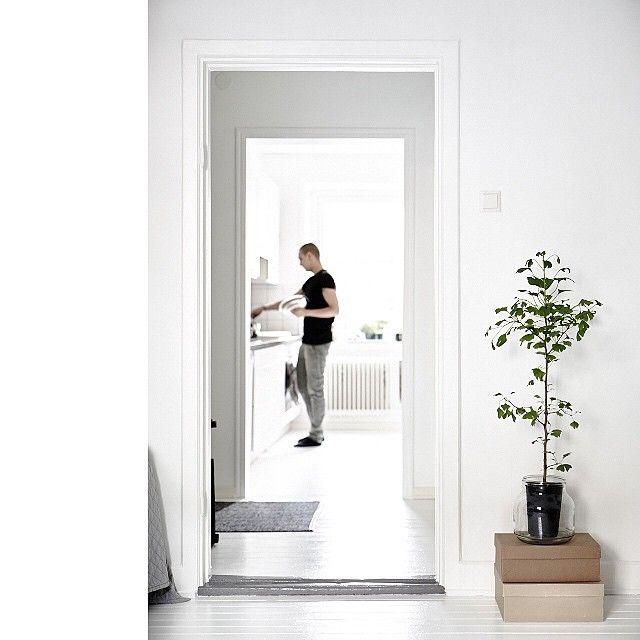 10 migliori immagini panca su Pinterest Casa e Pallet ideas - designer mobel baumstammen