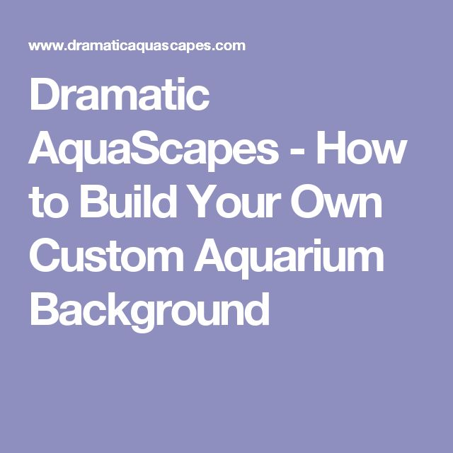 Dramatic AquaScapes - How to Build Your Own Custom Aquarium Background