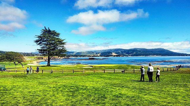 Agora eu entendi porque os campos de golf do The Lodge, em Peabble Beach são considerados os mais lindos do munndddoooo.  Parecem quadros pintados de tão incríveis! #ameipeabblebeach #thelodgepeabblebeach #acordeiqueroviajar #acordeinacalifornia #pebblebeach #montereylocals #pebblebeachlocals - posted by POR CAMILA CASTANHEIRA 🌍🌎🌏 https://www.instagram.com/acordeiqueroviajar - See more of Pebble Beach at http://pebblebeachlocals.com/