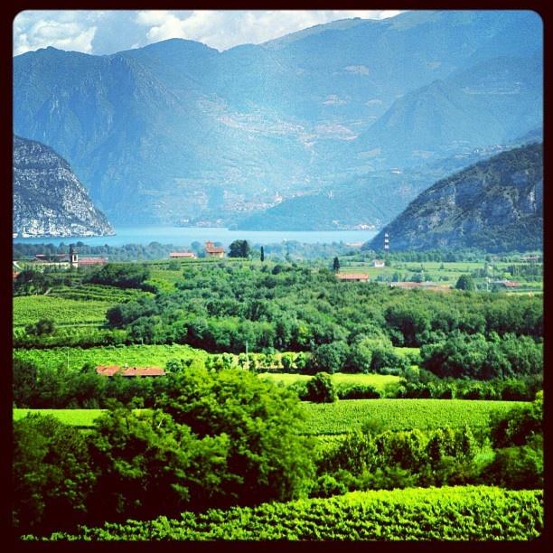 """@roncocalino's photo: """"Com'è bella la Franciacorta! #franciacorta #vino #wine #panorama #paesaggio #landscape #natura #nature #italy #italia #lago #lake #green #verde #blu #blue #brescia #lombardia #instaitalia #instagramitalia #instapic #wow"""""""