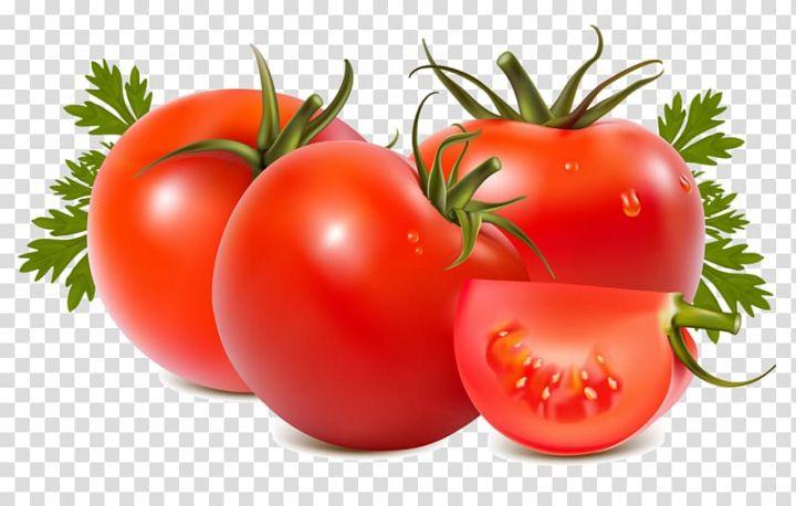 Roma Tomato Food Beefsteak Tomato Tomato Transparent Background Png Clipart Padroes De Papel De Parede Padrinhos
