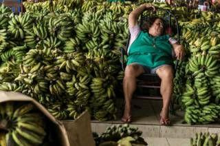 """Image copyright                  Getty                  Image caption                     El principal productor de bananas del mundo es Asia (50%) y le siguen América (33%) y África (14%), según la FAO.   A 100 días de los Juegos Olímpicos, Río de Janeiro """"entra en la recta final pareciendo más una clásica república bananera que una economía emergente moderna a punto de asumir su lugar entre las principales del mundo"""". Eso publicó es"""