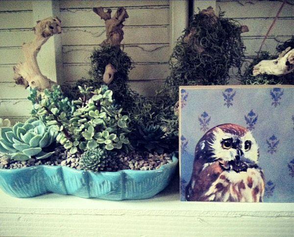 Indoor Garten Wohlfuhloase Wohnung Begrunen | Möbelideen