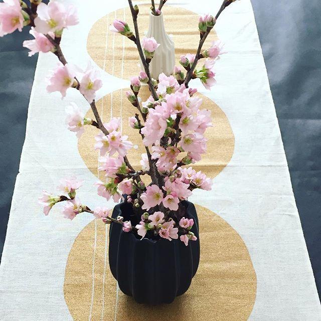 【keis09】さんのInstagramをピンしています。 《先日の和三盆ワークの後は 和の室礼にて春御膳ランチを用意しました。 テーブルには、早春出回る 啓翁桜を🌸🌸🌸 たらの芽の天ぷらや、愛知産のたま麩のお汁など 春をご堪能いただけたようで何よりでした❣️ #igersjp #ig_japan #igで繋がる世界 #テーブルコーディネート #室礼#桜#啓翁桜#春#onthetable #テーブルスタイリング#cherryblossom #花のある暮らし #花のある生活 #丁寧な暮らし #フラワーアレンジ#和三盆ワーク#cafegreengate#さいたま市中央区八王子#次は2月3日からしろくま展です#ファインダー越しの私の世界 #写真好きな人と繋がりたい #flowerstagram #tv_flowers #tv_living #still_life #springhascome》