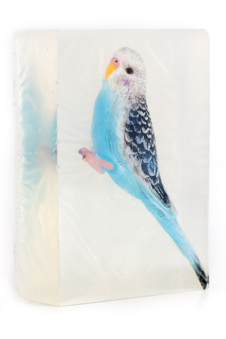 Sometimes we are so lucky to find a beautiful blue bird to put in a soap.