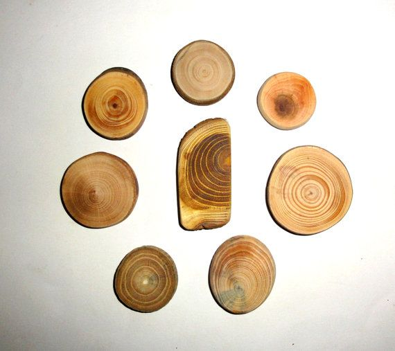 Jewelry supplies findings natural wood slice for by NayasArt