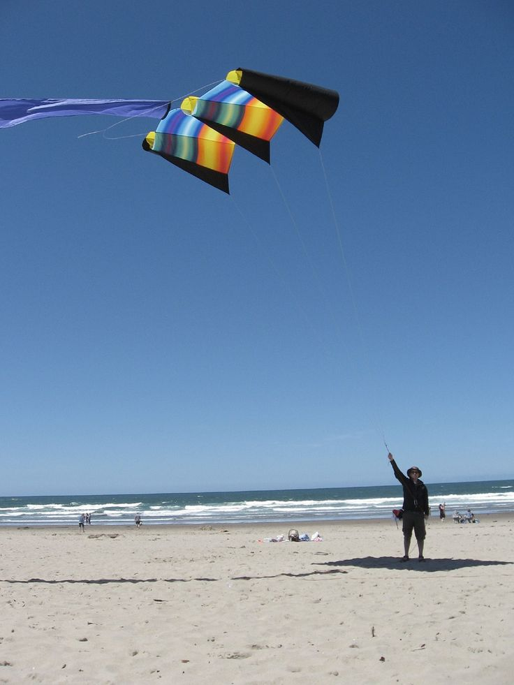 17 Best Images About People Flying Kites On Pinterest