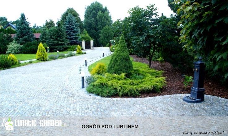 Ogród - zdjęcie od Lunatic Garden - Ogród - Lunatic Garden