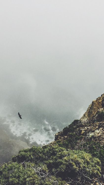 Up the Mountains / Find more Nature themed wallpapers for your #iPhone + #Android @prettywallpaper