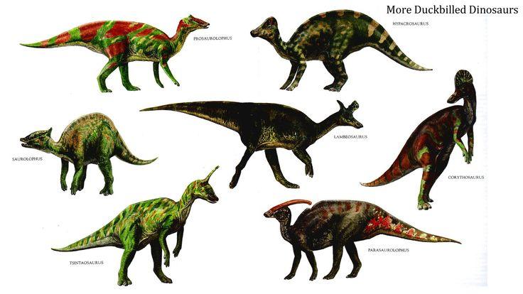 Herbivore dinosaurs google haku more