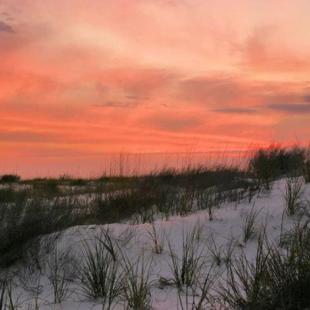 Perdido Key Alabama: 1015 Best Images About Beach: Pensacola Beach & Perdido