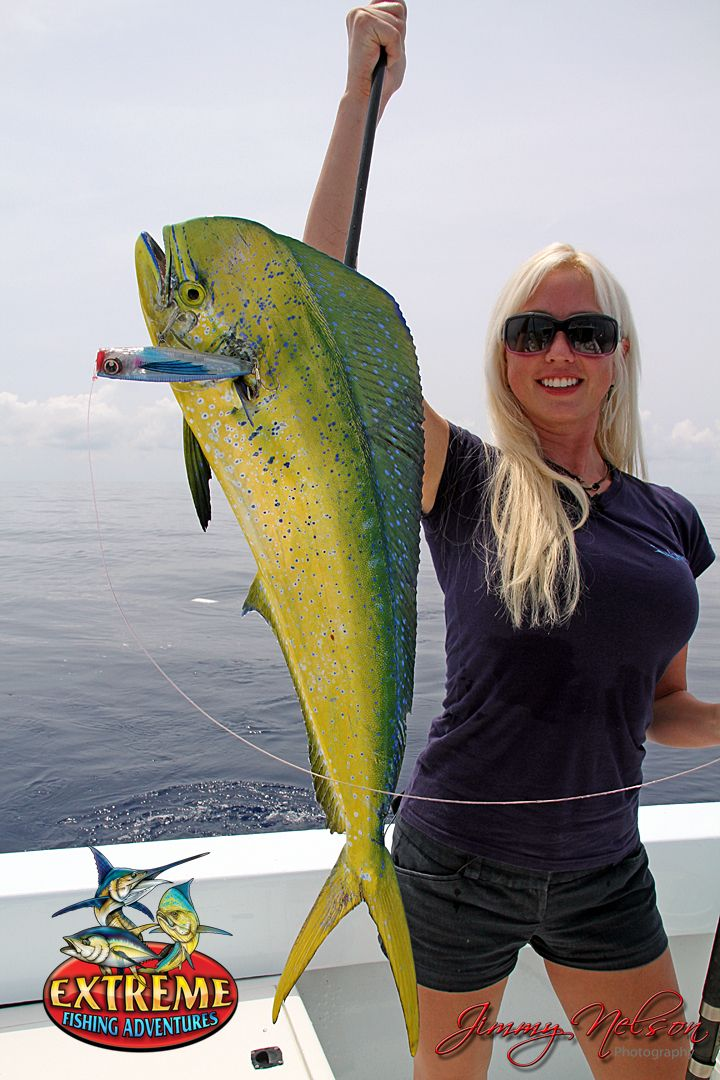 41 best images about capt lace allenius on pinterest for Fish for girls