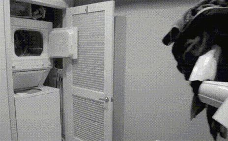 Funny Gifs Archives - Page 5 of 171 - The Meta Picture