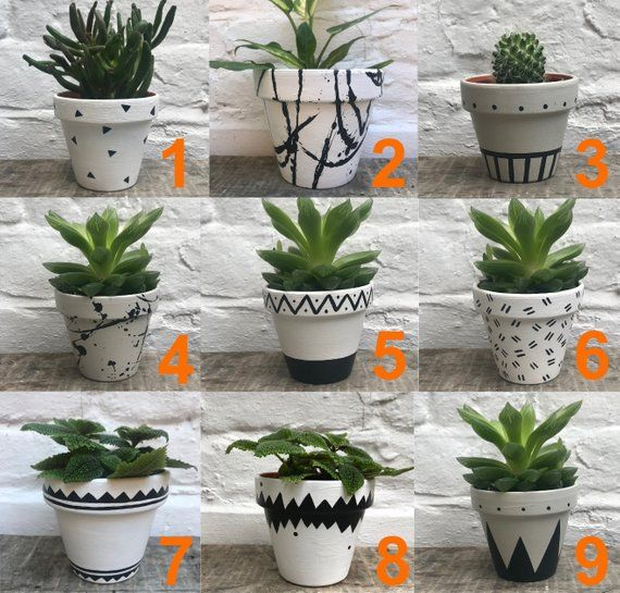 Small Hand Painted Geometric Pattern Plant Pots Painted Etsy Small Potted Plants Painted Plant Pots Flower Pots