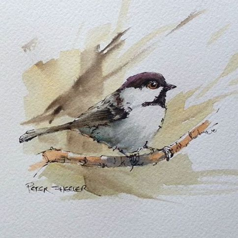 20 The Chronicles Of Watercolor Birds Tutorial Wishy Washy