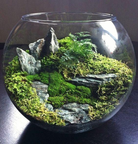Utiliser un bocal à poisson rouge pour créer un paysage/terrarium miniature <3: