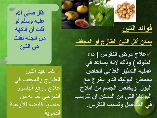 الطب النبوي و التداوي بالاعشاب تعرف على طعام النبي صلى الله عليه وسلم صور Health Body Health Food
