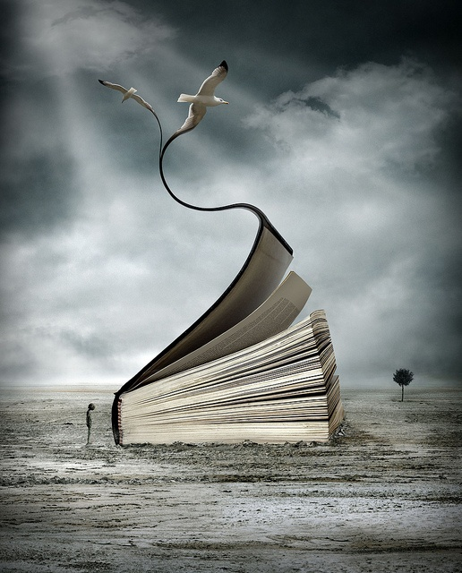 Oriol Jolonch - Libro y gaviotasWorth Reading, Books, Reading, Book Art, Book Worth, Image Fantasy, My Passion, Photos Book, Fave Filmstvbooksmus