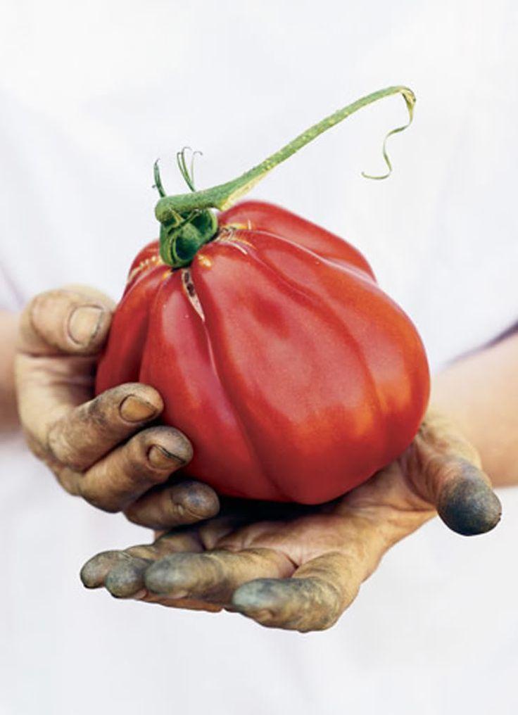 VIDA Foldaway Tote - Tomates by VIDA cA1lSA3T56