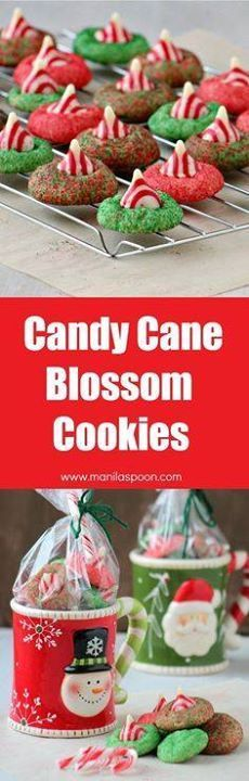These festive classi These festive classic Candy Cane Blossom...  These festive classi These festive classic Candy Cane Blossom Cookies are not just gorgeous; they are delicious too. Perfect as gift for teachers family and friends.I gave this as a gift in a mug and it was well-loved! | manilaspoon.com Recipe : http://ift.tt/1hGiZgA And @ItsNutella  http://ift.tt/2v8iUYW