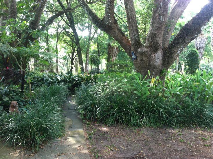 Botanical Gardens on our Sunken Jungle Trek at Dade City's Wild Things